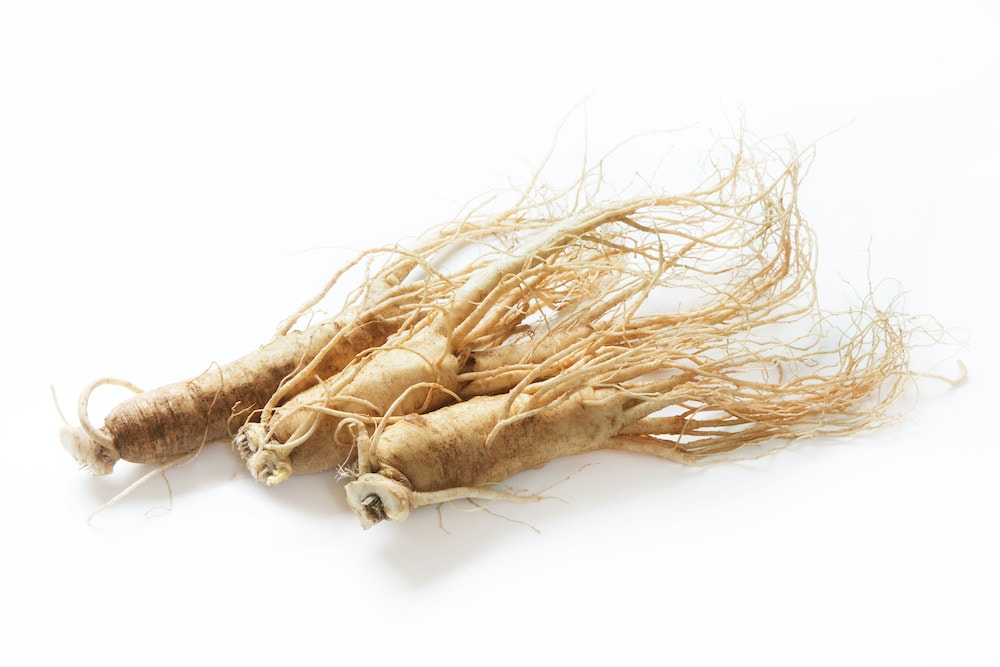 オタネニンジンの根